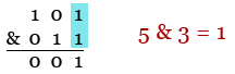 Base Converting and Binary Operators 5