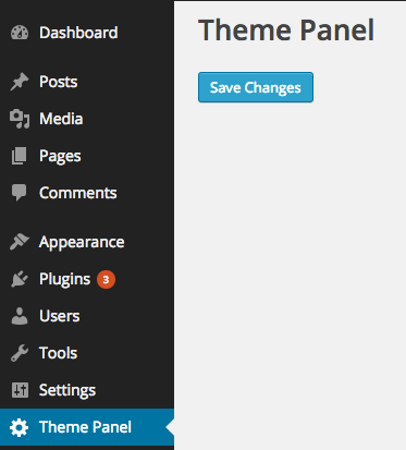 Theme Settings API Example
