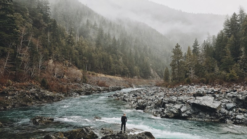 man vs. nature: A man in a wide open cool climate forest valley