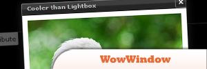 WowWindow-Plugin.jpg