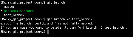 Deleting a branch in Git using the -d option