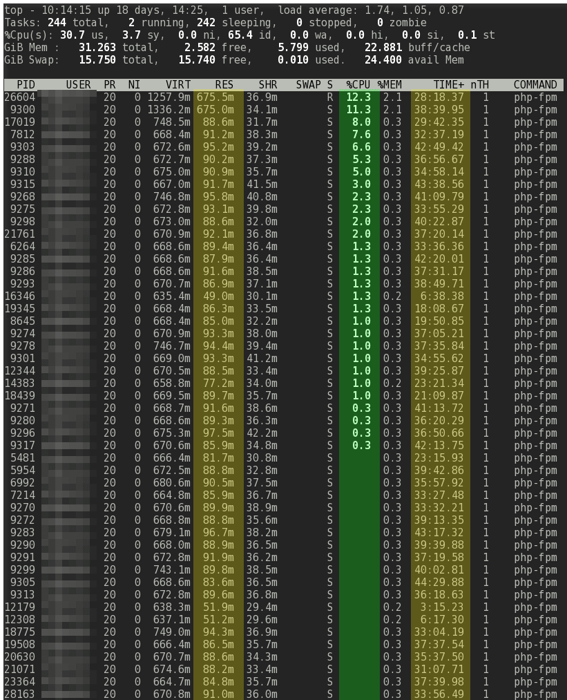 Linux top php-fpm static pm