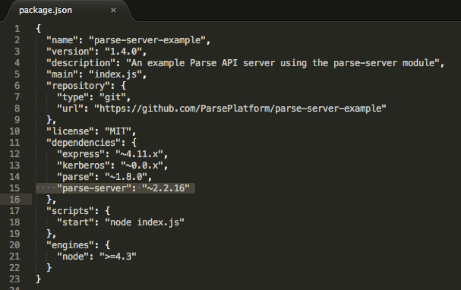 Package.json with Parse Server Installation Info