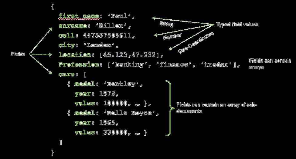 JSON document example